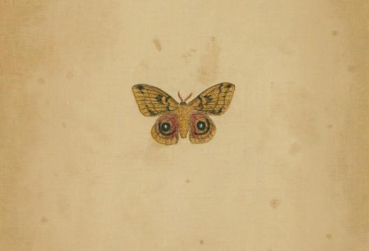 刘传宏,木一少——巴彦茫哈牧场(局部),布面油画,50 × 26cm,创作时间不详Liu Chuanhong, Mu Yishao——Bayanmangha Farm(Detail), 50 × 26cm, Oil on Canvas, Unknown