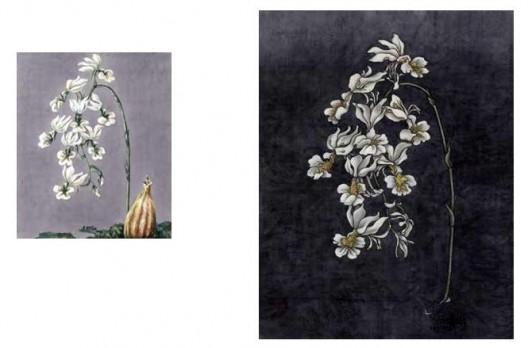 《还是花鸟画1913-2013》,水彩,24.3×29.3 cm,2013(左);《还是花鸟画1913-2013》,绢本工笔重彩,90×70 cm,2013(右)