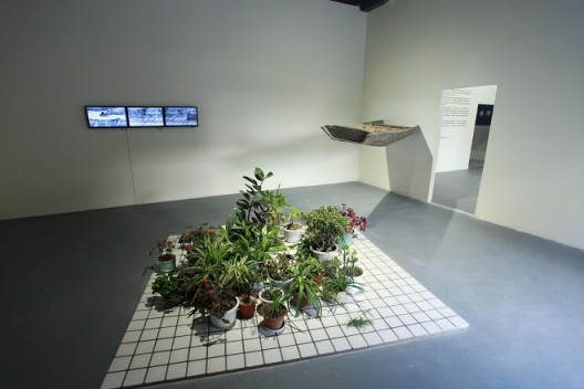 """Cao Mingzhi and Chen Jianjun """"Rooftop and the Wall"""" project, 2016 (garden, installation [materials: plants, tiles from the square, video, text) 曹明浩+陈建军「天台与墙」剧场,花园,装置(材料:植物、⼲场瓷砖、视频、⽂字),2016"""