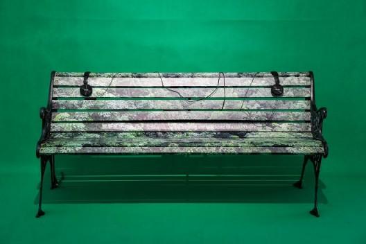 胡昀,《卢森堡公园》,多媒介装置,尺寸可变,2017