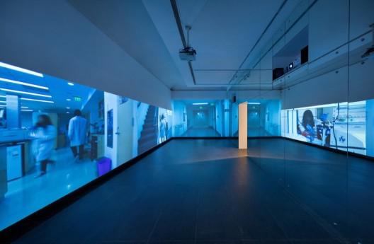 "Lynn Hershman Leeson, ""The Infinity Engine"", wallpaper, 2 lab doors, pedestals with perspexhoods, variable dimension, 2014"