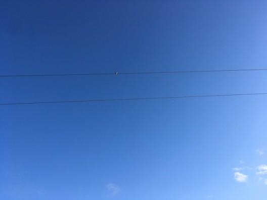 Blue Sky © Claire Kerr 2020