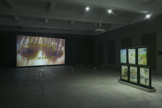 13_Thao Nguyen Phan at Chisenhale Gallery copy